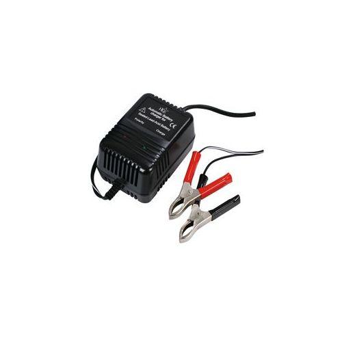 Polnilec svinčenih akumulatorjev (2V, 6V in 12V)
